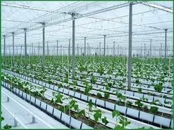 Thành lập Khu nông nghiệp ứng dụng công nghệ cao Phú Yên